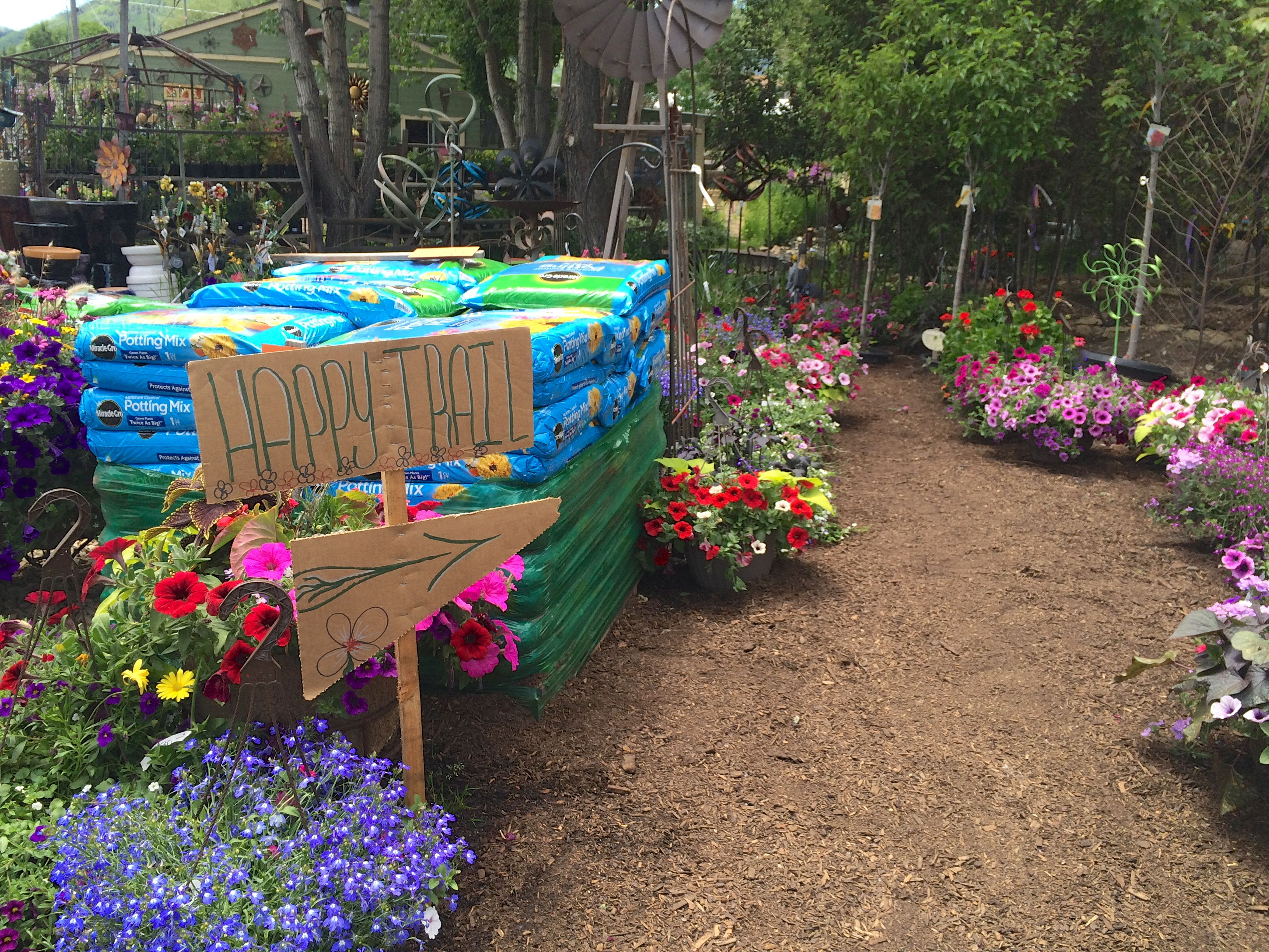 Homegrown: Garden 2015 – the usual bliss